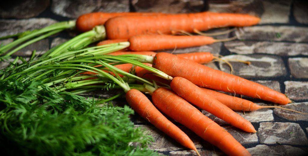 Karotten, mit Grün auf einem steinigen Untergrund